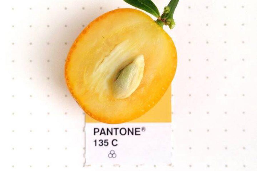 Pantonekulor i flera läckra färger